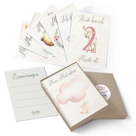 Meilensteinkarten Geschenkidee zur Geburt Baby Mädchen