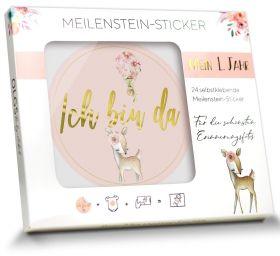 24 selbstklebende Baby Meilenstein-Sticker Milestone Aufkleber Junge/Mädchen