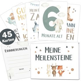 45 Baby Meilensteinkarten Lino für Junge und Mädchen (Deutsch / Englisch)